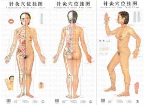 Mays Chinese Massage in Bunbury